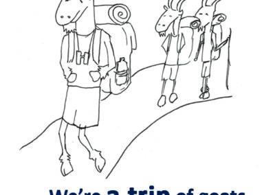 a trip of goats